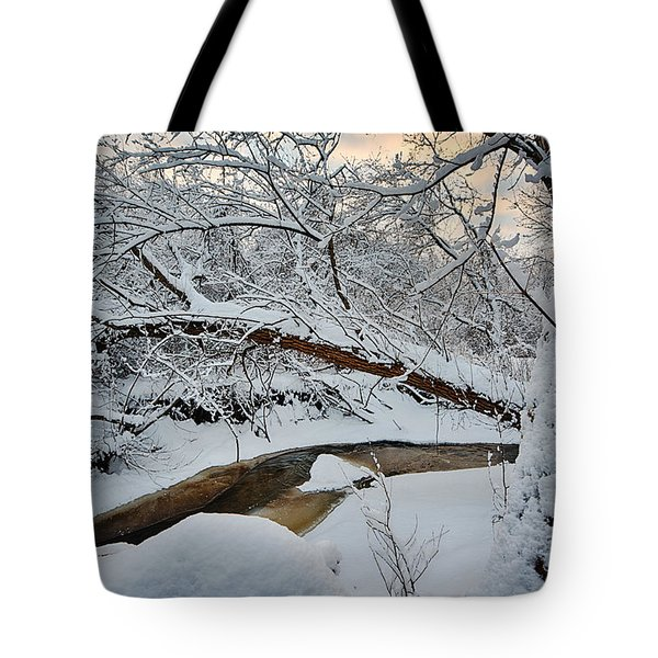 Frozen Creek Tote Bag by Sebastian Musial