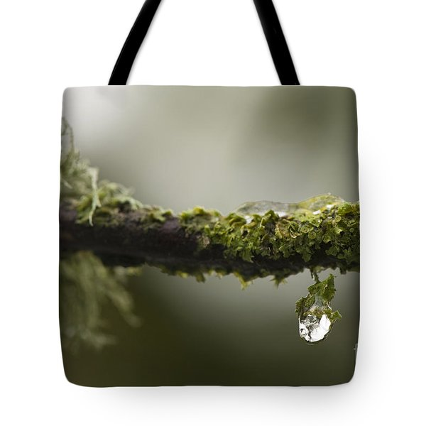 Frozen Droplet Tote Bag by Anne Gilbert