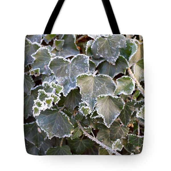 Tote Bag featuring the painting Frozen Hedera Helix 2 by Felicia Tica