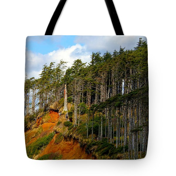 Frozen In Time Tote Bag by Jeanette C Landstrom
