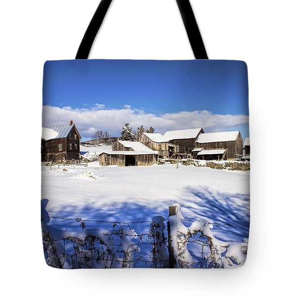 Frozen In Time One  Tote Bag