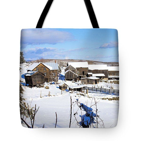 Frozen In Time Two In Color Tote Bag
