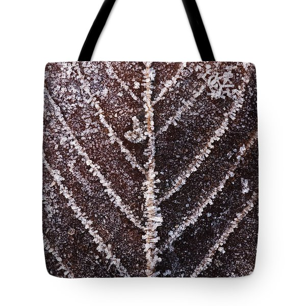 Frozen Leaf Tote Bag by Anne Gilbert