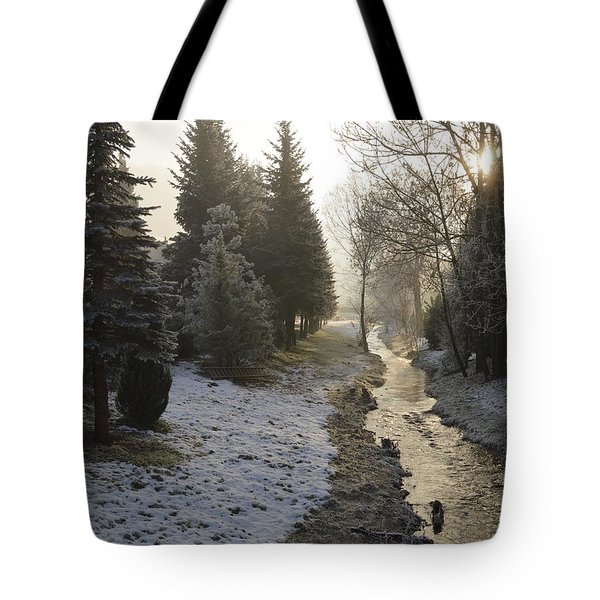 Tote Bag featuring the painting Frozen Light by Felicia Tica