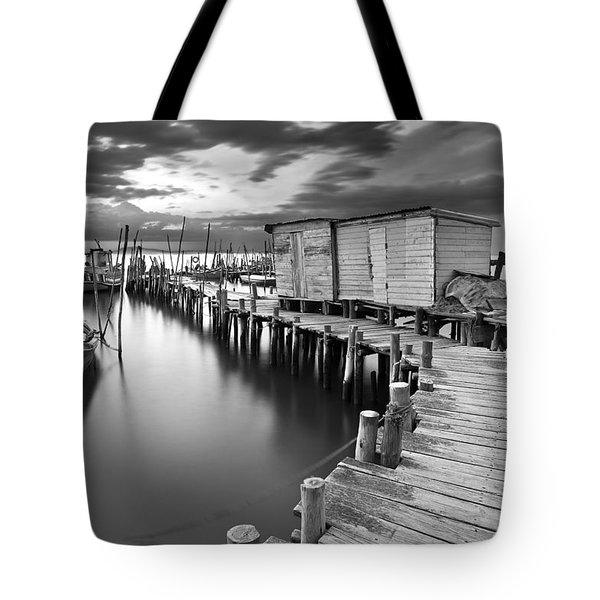 Frozen Melody Tote Bag by Jorge Maia