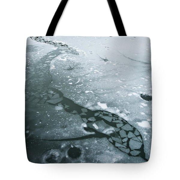 Frozen Pond Tote Bag by Gary Eason
