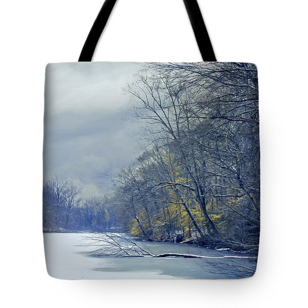 Frozen Pond Tote Bag by John Rivera