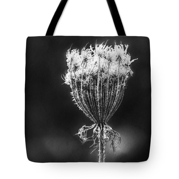 Tote Bag featuring the photograph Frozen Queen by Melanie Lankford Photography