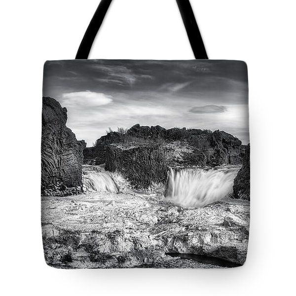Frozen Splendor Tote Bag by Evelina Kremsdorf