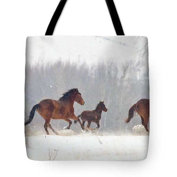 Frozen Track Tote Bag by Mike  Dawson