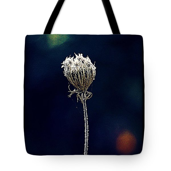 Tote Bag featuring the photograph Frozen Warmth by Melanie Lankford Photography
