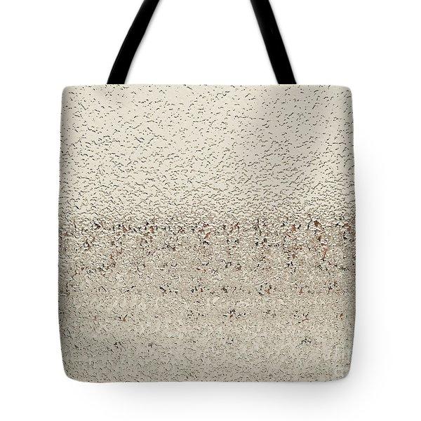 Frozen Window Tote Bag