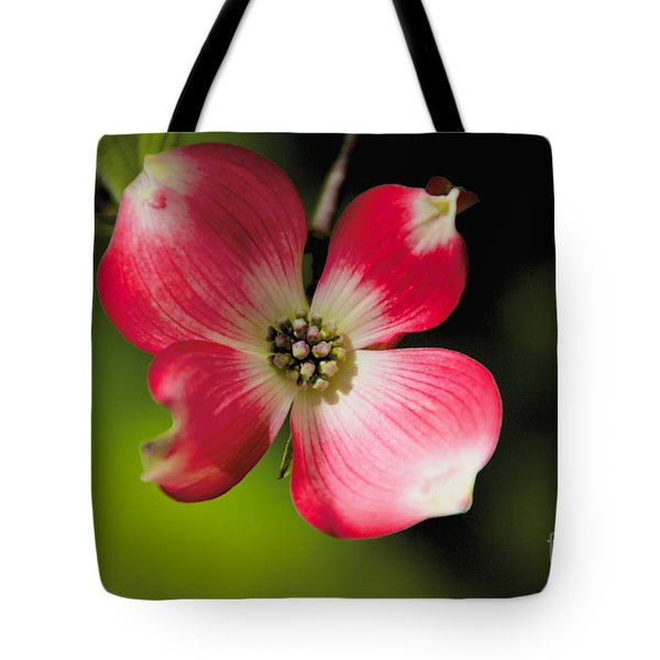 Tote Bag featuring the photograph Fruit Tree Flower by William Norton