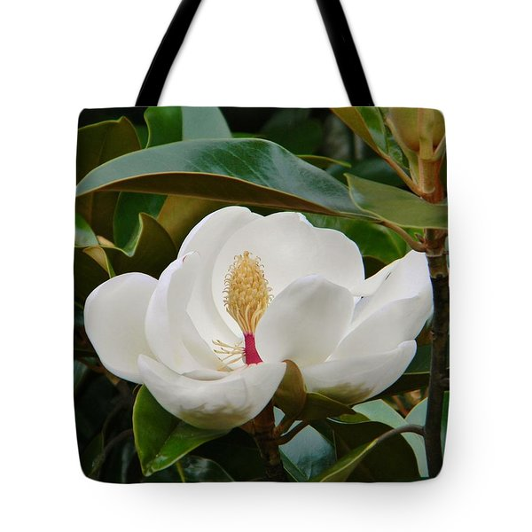 Full Bloom Tote Bag by Jean Goodwin Brooks