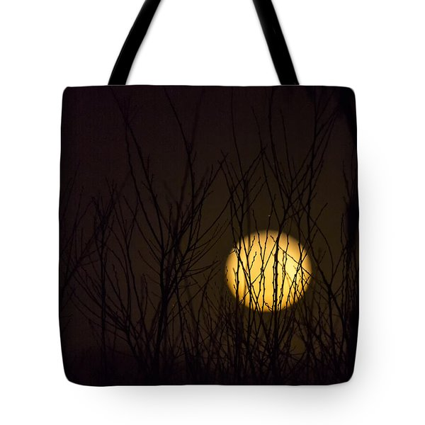 Full Moon Behind The Trees Tote Bag by Angela A Stanton