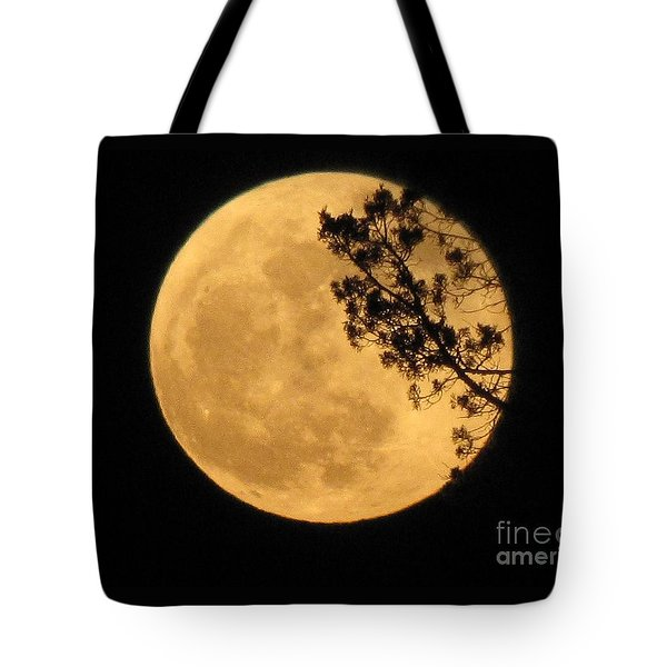 Tote Bag featuring the photograph Full Moon by Michele Penner