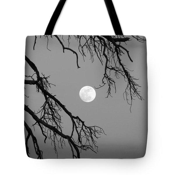 Full Moon Old Snag Tote Bag