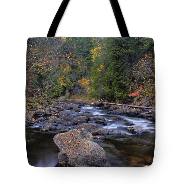 Tote Bag featuring the photograph Full Of Moxie by Greg DeBeck