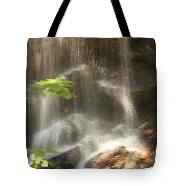 Fuller Falls Tote Bag