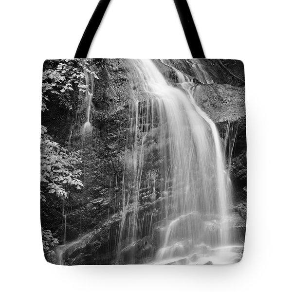 Fuller Falls Waterfall Black And White Tote Bag