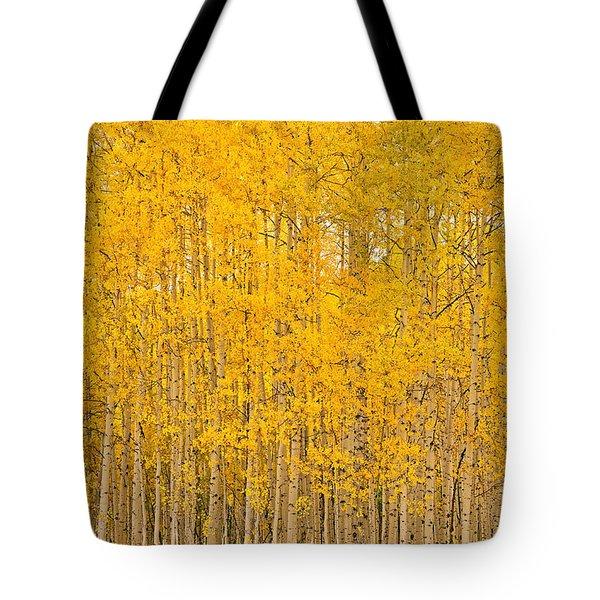 Fullness Of Gold Tote Bag