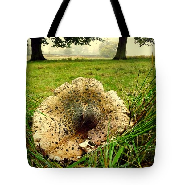 Fun-guy Tote Bag by Linsey Williams