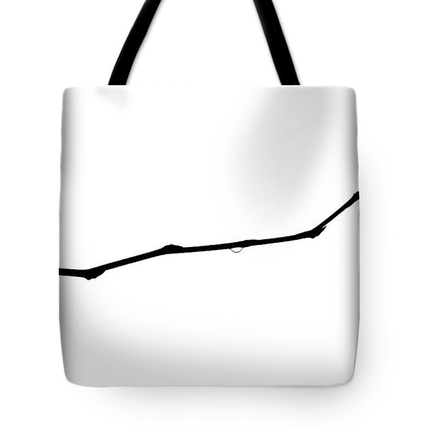 Fundamental Particles Of Life Tote Bag by Alexander Senin