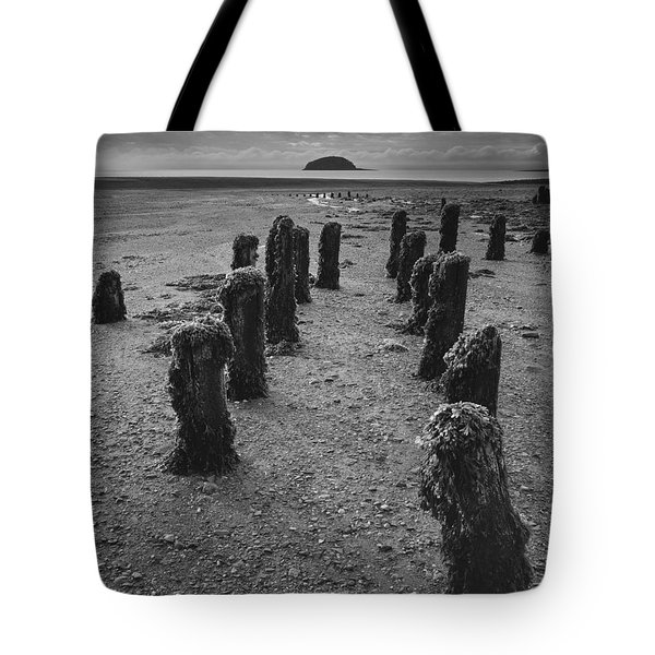 Fundy Dock Tote Bag