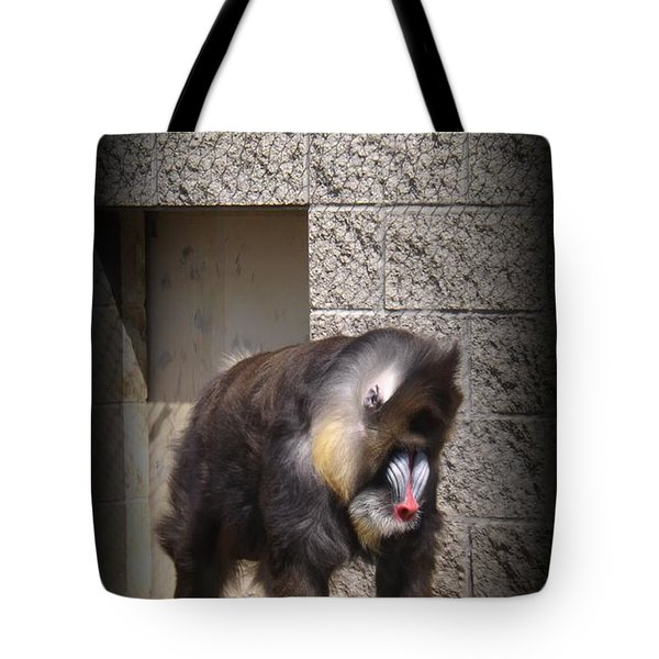 Funny Face Tote Bag by Sara  Raber