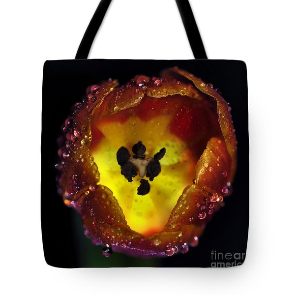 Furnace In A Tulip 2 Tote Bag by Kaye Menner