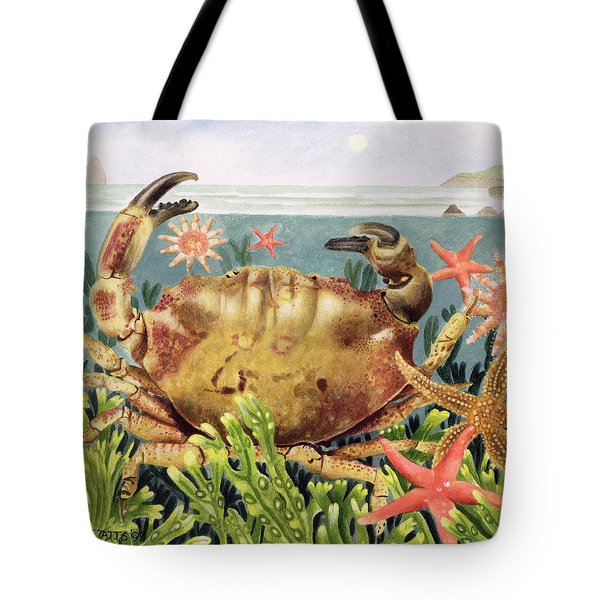 Furrowed Crab With Starfish Underwater Tote Bag by EB Watts