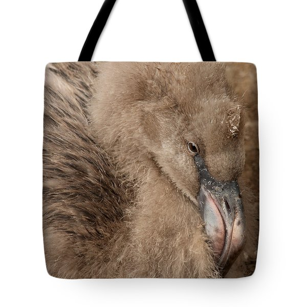 Tote Bag featuring the photograph Fuzzy Flamingo Baby by Bob and Jan Shriner