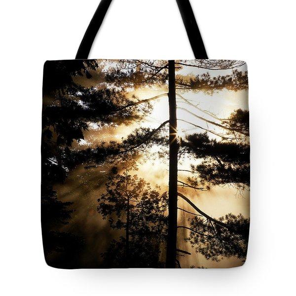 Fv5423, Perry Mastrovito Sunrise Though Tote Bag by Perry Mastrovito