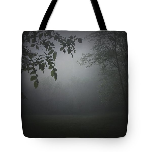 Gaia Cathedral Tote Bag by Cynthia Lassiter