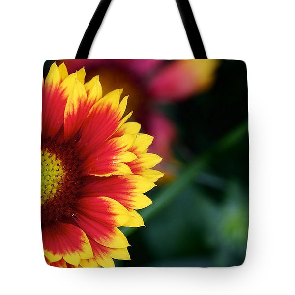 Tote Bag featuring the photograph Gaillardia Grandiflora by Nature and Wildlife Photography