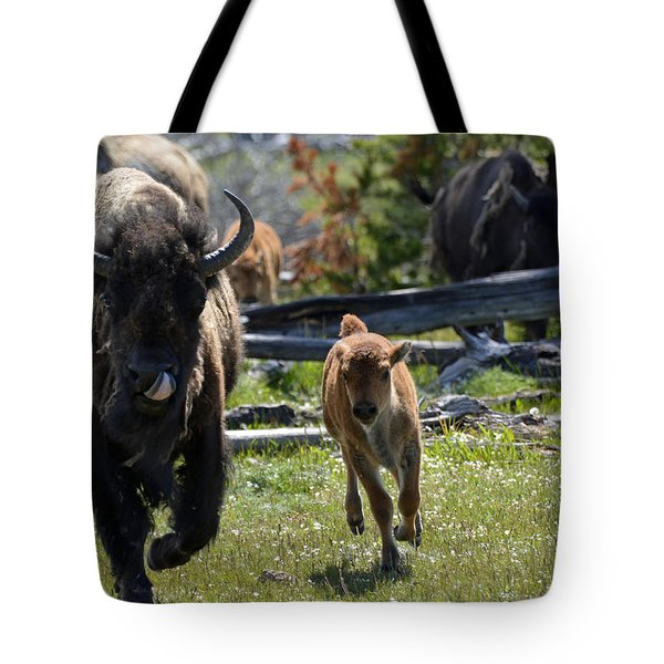 Gallopin Bison Mom And Calf Tote Bag by Bruce Gourley
