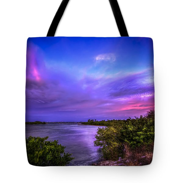 Gandy Lagoon 2 Tote Bag by Marvin Spates