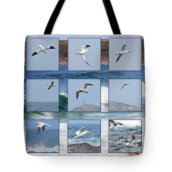 Gannets Galore Tote Bag by Terri Waters