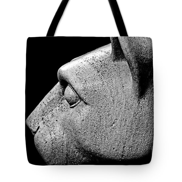 Garatti's Lion Tote Bag by Tom Gari Gallery-Three-Photography