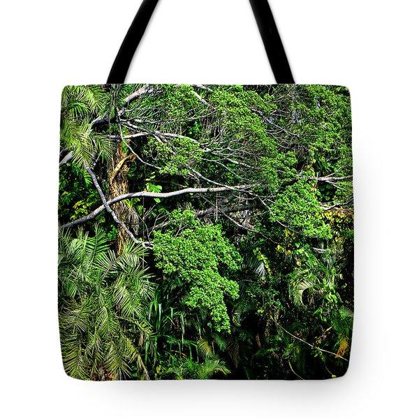 Garden Of Eden Tote Bag by Joanna Madloch