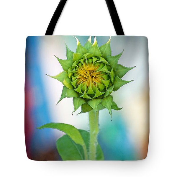 Garden Of Many Colors Tote Bag by Gwyn Newcombe