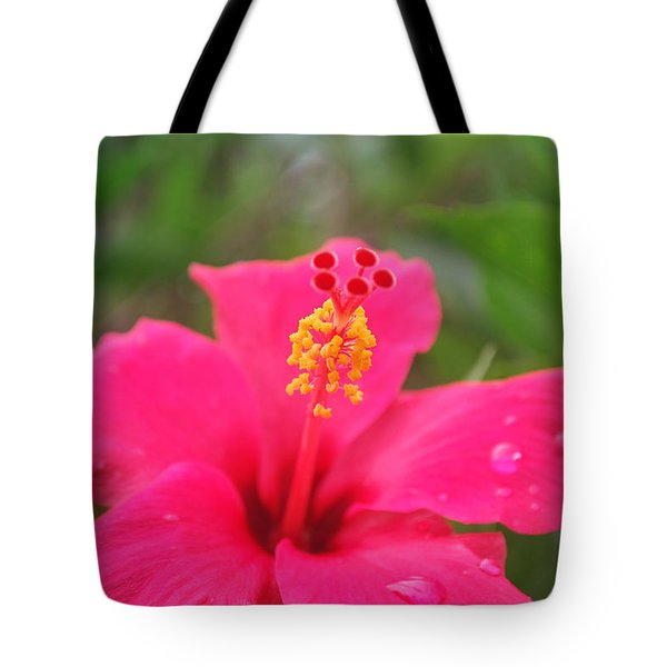 Tote Bag featuring the photograph Garden Rains by Miguel Winterpacht