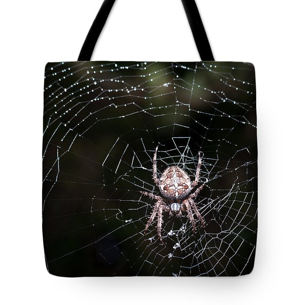 Tote Bag featuring the photograph Garden Spider by Matt Malloy