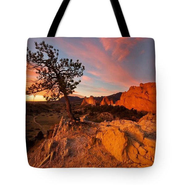 Tote Bag featuring the photograph Garden Sunrise by Ronda Kimbrow