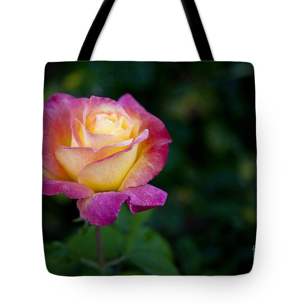 Tote Bag featuring the photograph Garden Tea Rose by David Millenheft