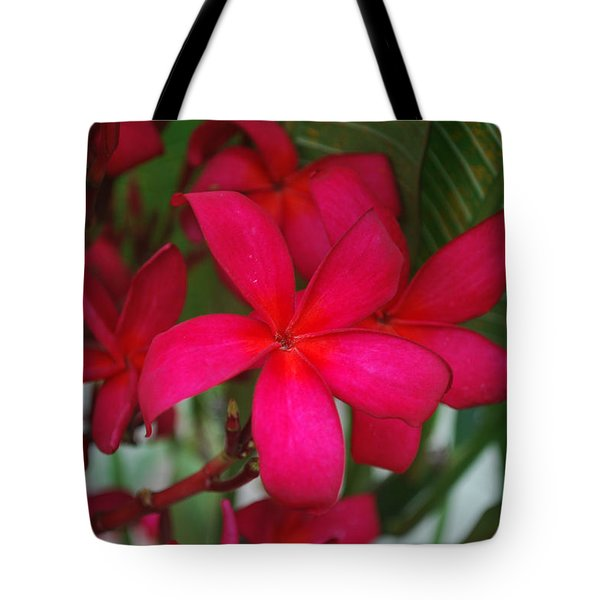 Tote Bag featuring the photograph Garden Treasures by Miguel Winterpacht