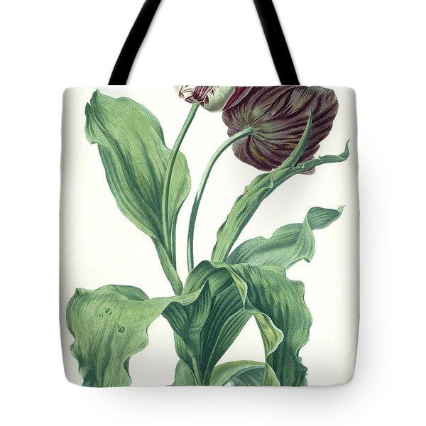 Garden Tulip Tote Bag