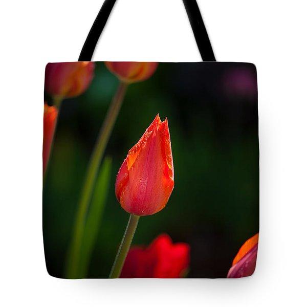 Garden Tulips Tote Bag