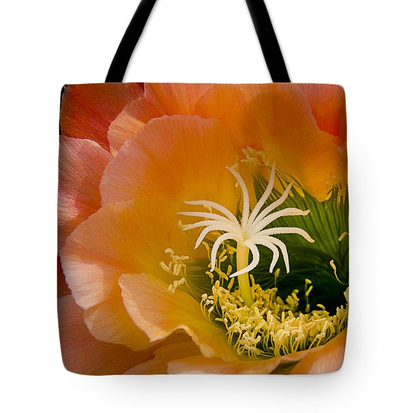 Garden Within Tote Bag by Julie Palencia