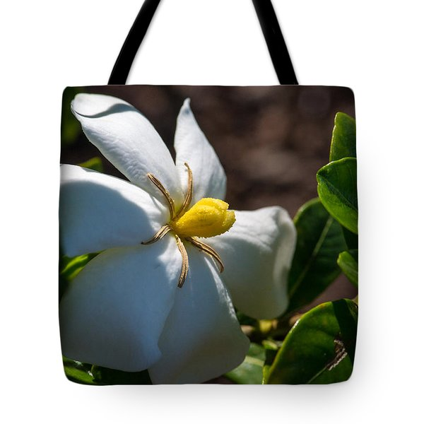 Gardenia At Twilight 2 Tote Bag